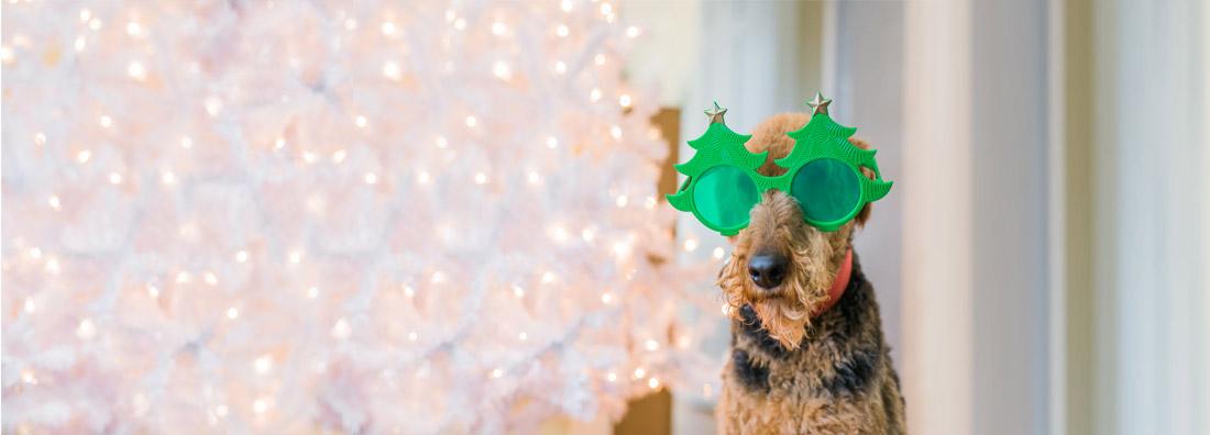 11 tips för att maxa julhandeln
